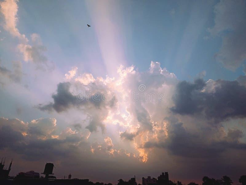 подъем солнца облака птицы неба стоковые фотографии rf