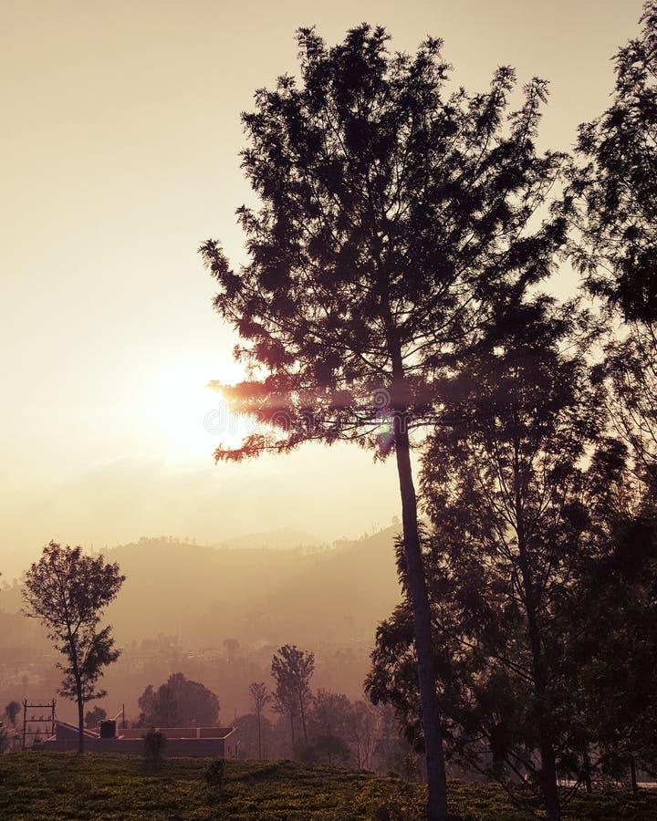 Подъем солнца стоковое изображение