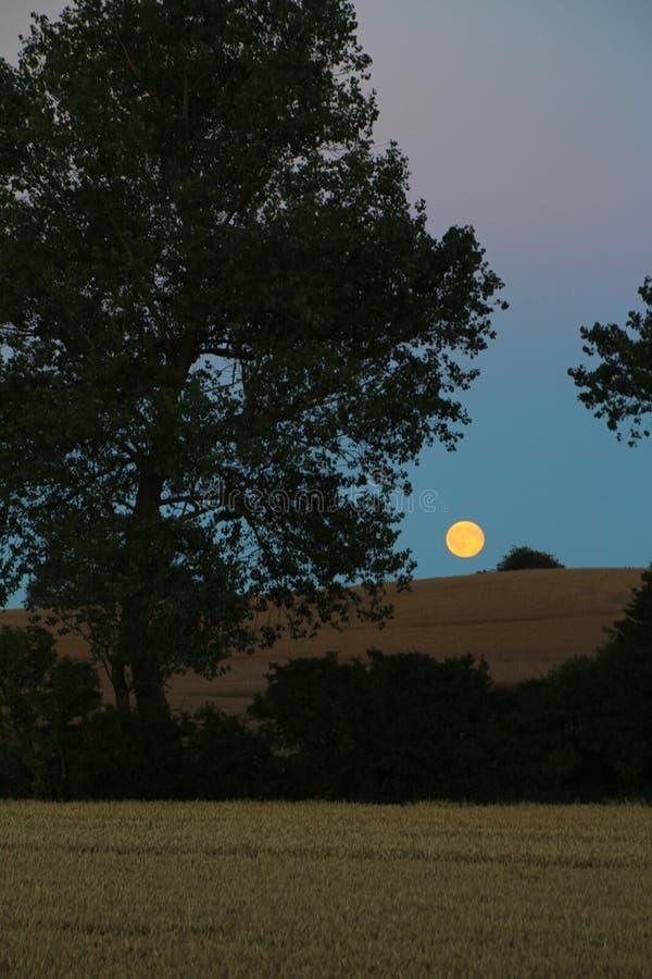 Подъем Moone на верхнюю часть холма стоковое фото