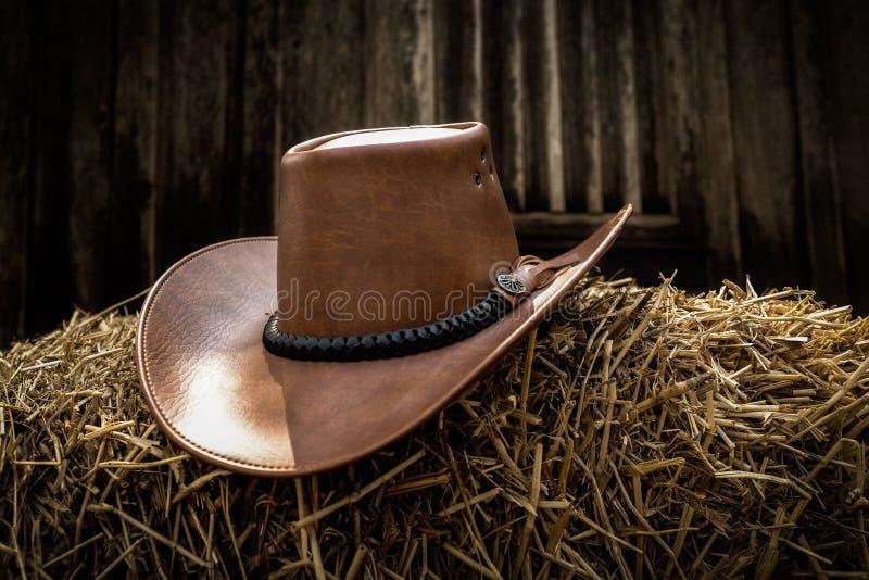 польза езды лошади шлема ковбоя стоковое изображение rf