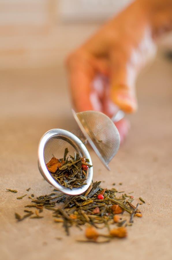Польностью раскрытый стрейнер чая стоковая фотография