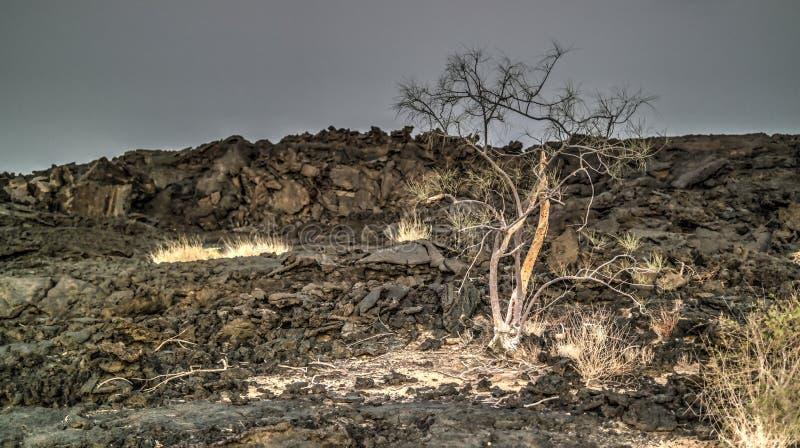 Поля лавы вокруг вулкана эля Erta, Danakil, Afar, Эфиопия стоковое фото rf