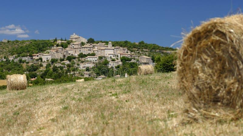 Поля сена в Joucas Провансали стоковые фотографии rf