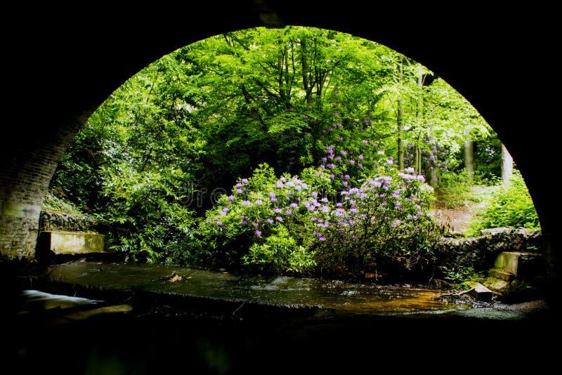 Под bridgw стоковая фотография rf