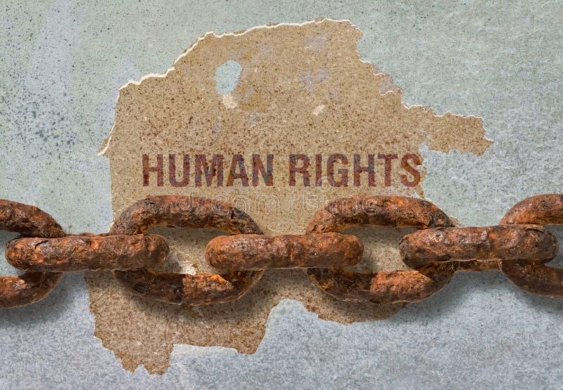 Права человека текста стоковые фотографии rf