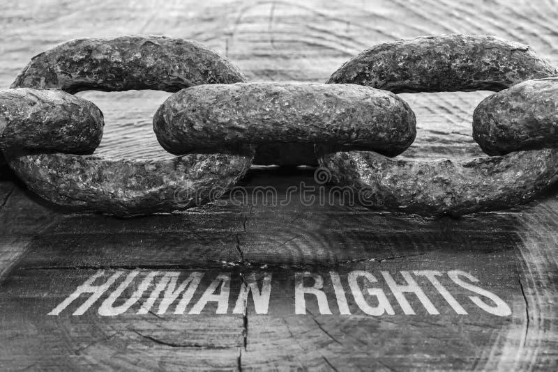Права человека текста стоковая фотография rf