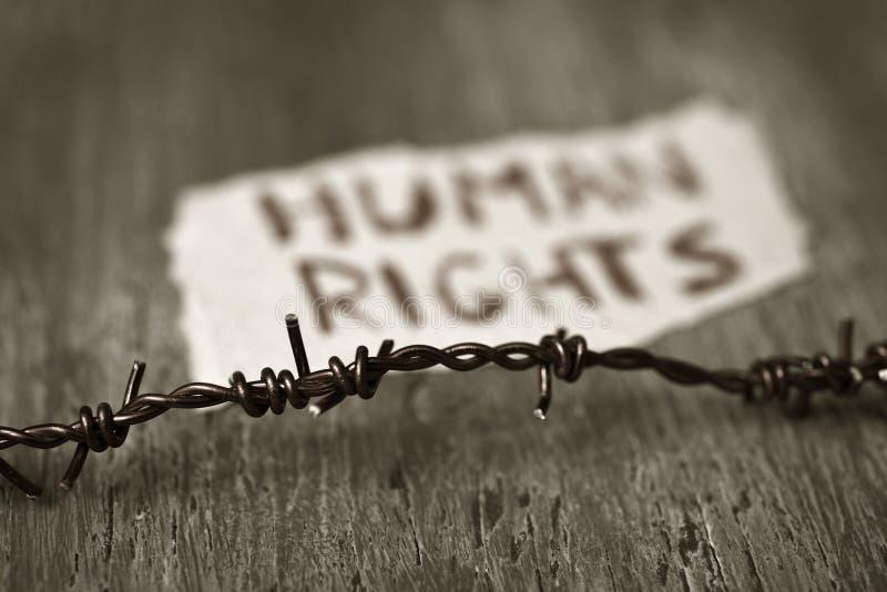 Права человека колючей проволоки и текста стоковые фотографии rf