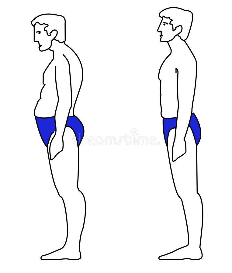 Правильный человек позиции иллюстрация вектора