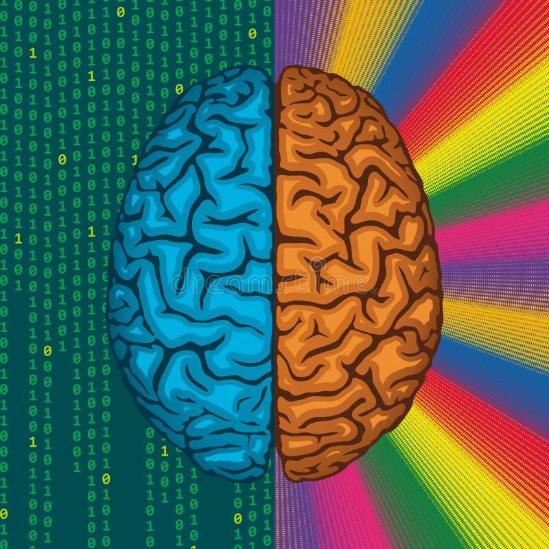 правый мозг левый мозг картинки лучший день году