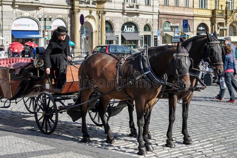 ПРАГА, ЧЕХОСЛОВАКСКОЕ REPUBLIC/EUROPE - 24-ОЕ СЕНТЯБРЯ: Лошадь и carriag стоковые фото