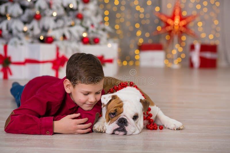 Праздники рождества красивый мальчик насладиться временем жизни с его бульдогом друга английским близко к дереву Нового Года с на стоковое изображение