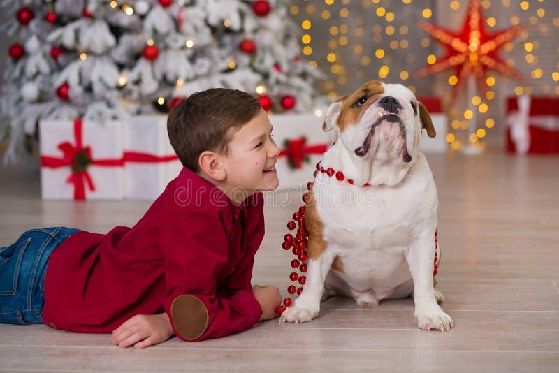 Праздники рождества красивый мальчик насладиться временем жизни с его бульдогом друга английским близко к дереву Нового Года с на стоковое изображение rf