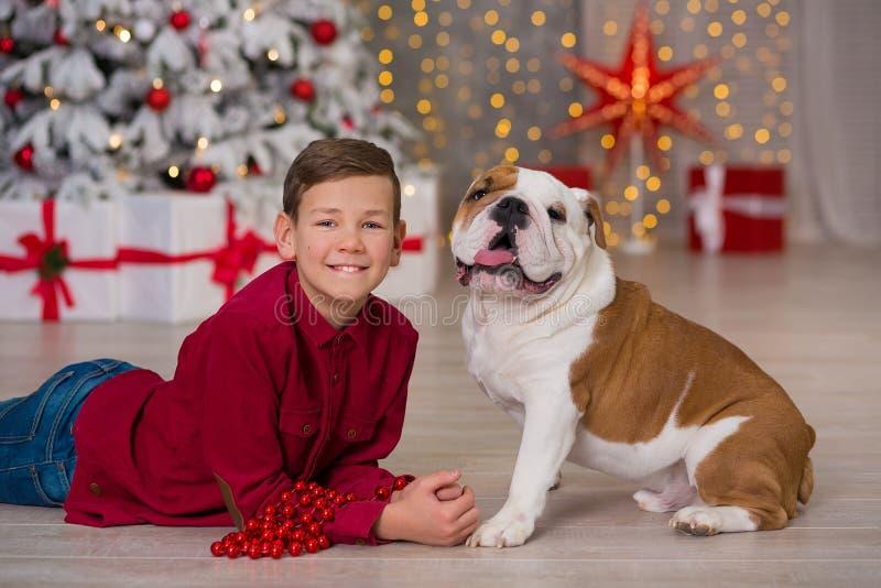 Праздники рождества красивый мальчик насладиться временем жизни с его бульдогом друга английским близко к дереву Нового Года с на стоковые изображения rf