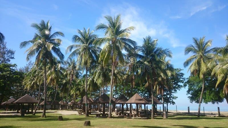 Праздник в пляже стоковое изображение rf