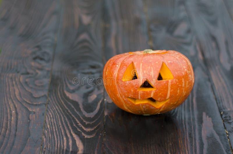 Праздник хеллоуина с тыквой на темной деревянной предпосылке Праздник хеллоуина с тыквой на темной деревянной предпосылке подними стоковые изображения