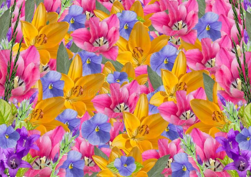 Праздничный яркий коллаж цветков бесплатная иллюстрация