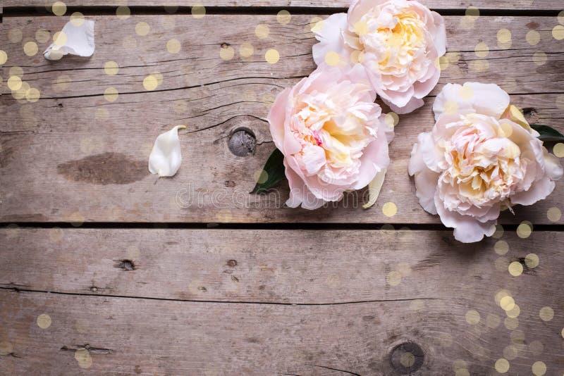 Праздничная предпосылка с розовыми пионами цветет на постаретой деревянной плате стоковое изображение