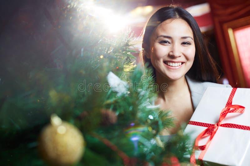 праздновать рождество стоковые фотографии rf