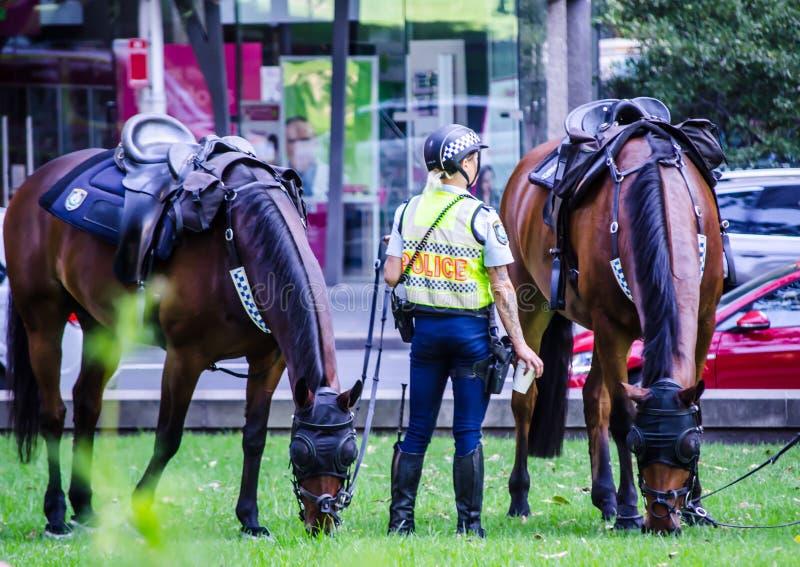 Пребывание офицера женщина-полицейского Нового Уэльса с его лошадью на Сиднее CBD стоковая фотография