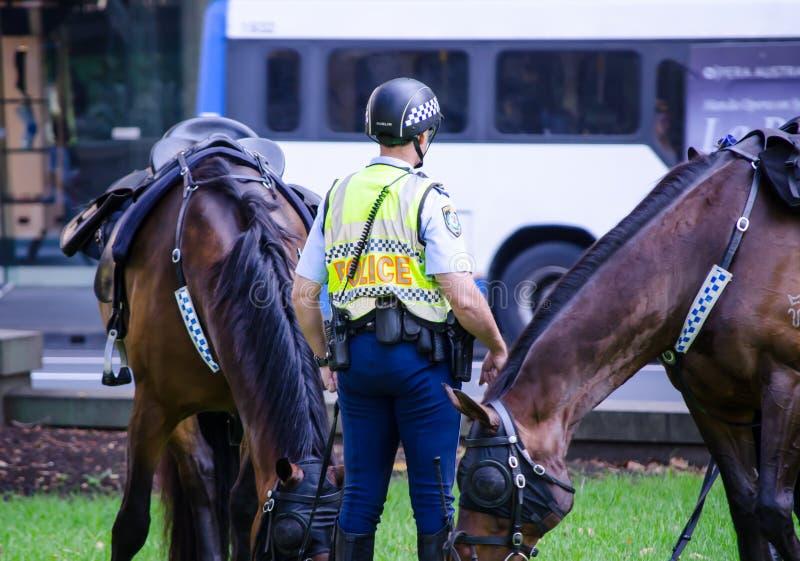 Пребывание офицера полицейския Нового Уэльса с его лошадью на Сиднее CBD стоковые фотографии rf