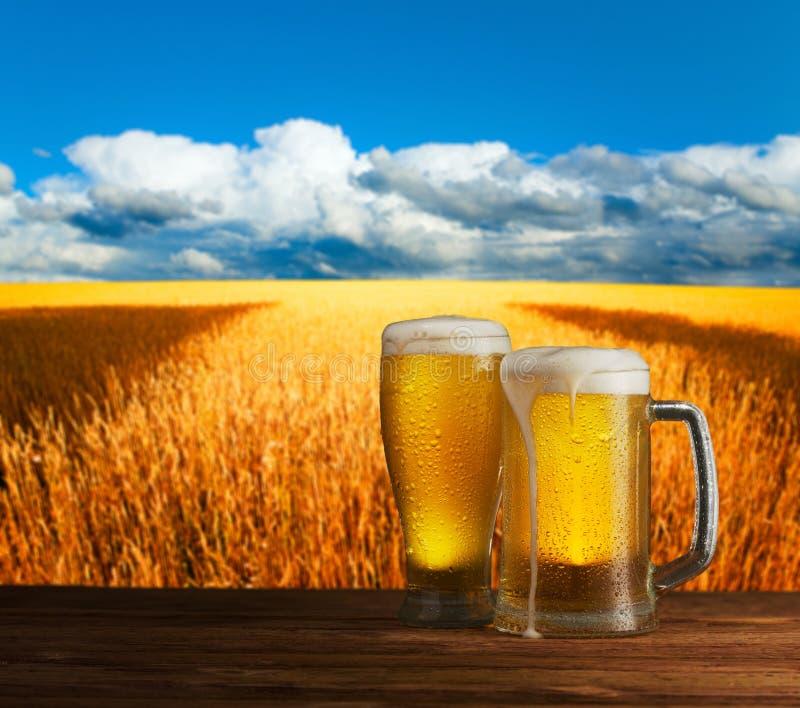 Превосходное светлое пиво на деревянном столе стоковое фото