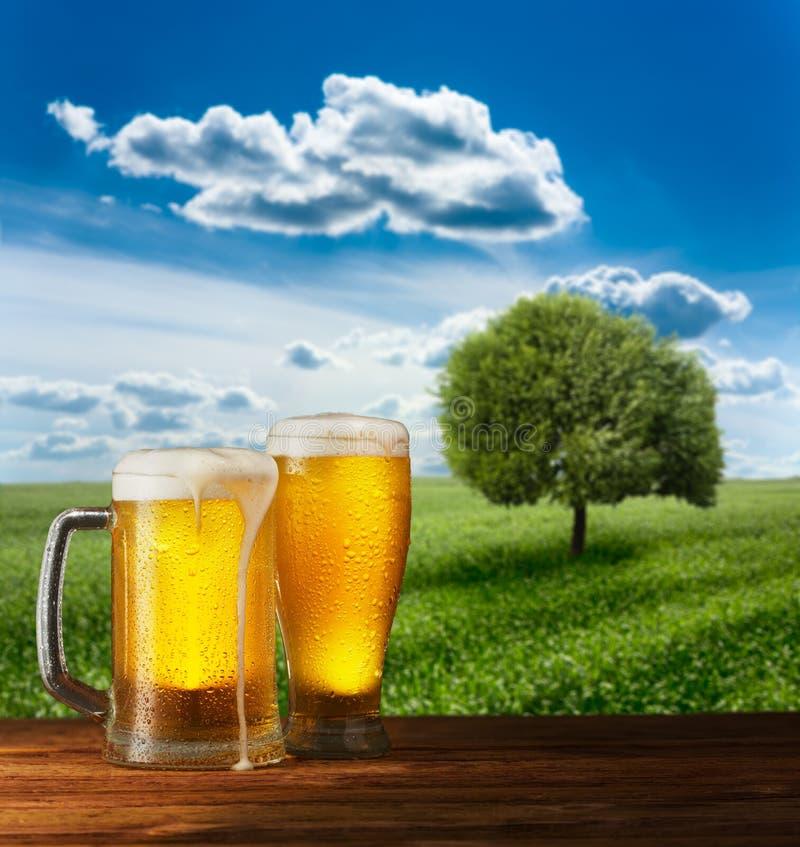 Превосходное светлое пиво на деревянном столе стоковые изображения rf