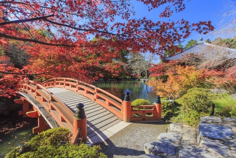 Превосходный взгляд, цвет падения на виске Daigoji, Японии в осени стоковое фото