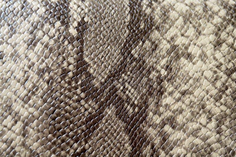 Предварительная предпосылка кожи стоковое изображение rf