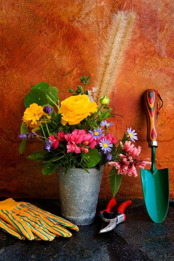предметы первой необходимости garned весна стоковые изображения