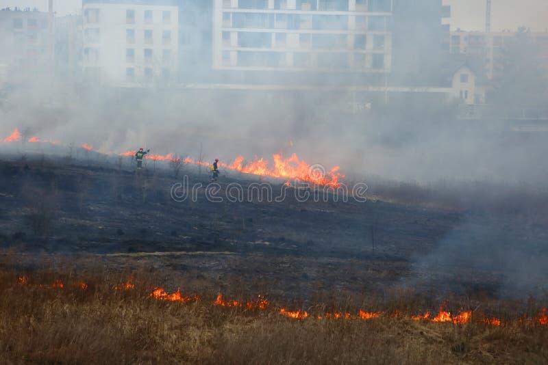 Предохранитель во время пожаротушения на сухих лугах стоковое изображение