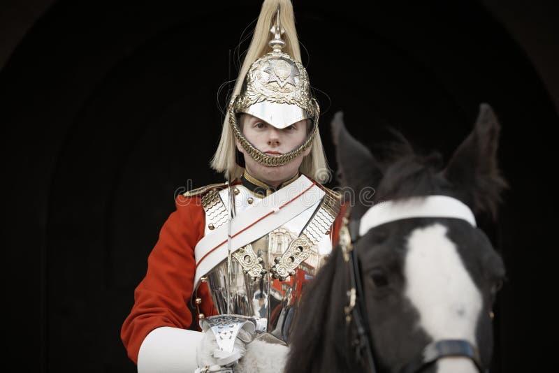 Предохранитель лошади стоковая фотография