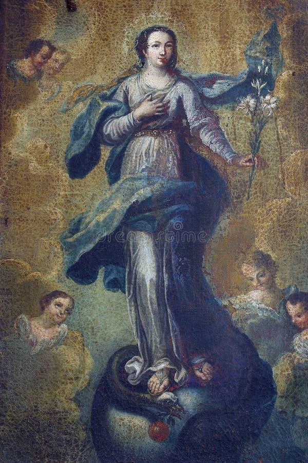 Предположение девственницы Mary стоковые изображения rf
