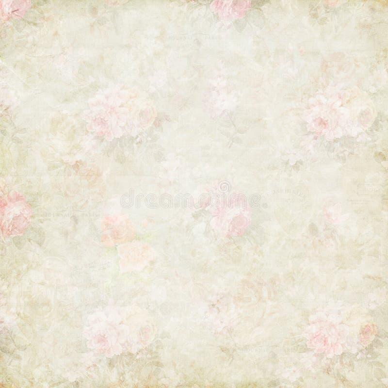 Предпосылка античных затрапезных розовых роз бумажная иллюстрация вектора