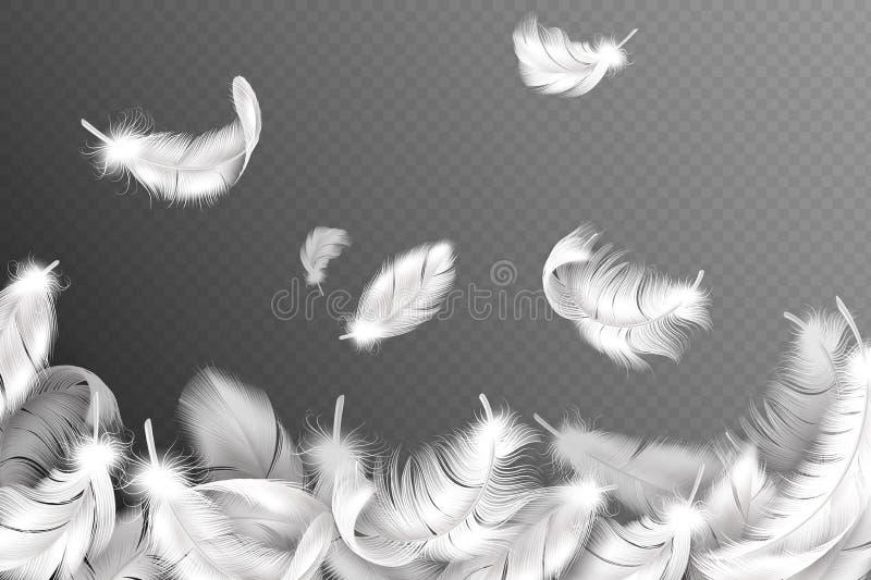 Предпосылка белых пер Падая лебедь летания пушистые, голубь или крылья ангела оперяются, мягкое оперение птицы Летчик стиля иллюстрация вектора