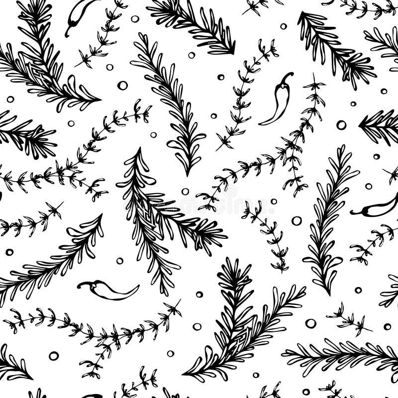 Предпосылка вектора перца чилей, Розмари и тимиана безшовная бесконечная Свежие зеленые травы для варить мяса, стейка или морепро иллюстрация штока