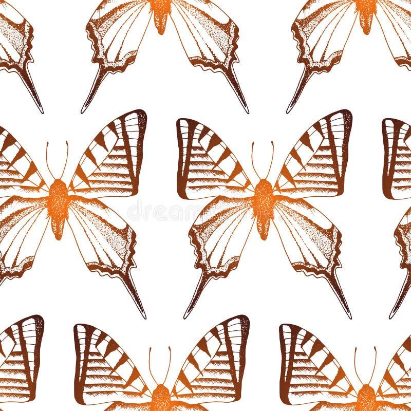 Предпосылка вектора с иллюстрациями насекомого руки вычерченными иллюстрация вектора