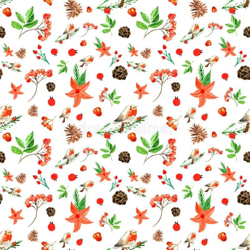 Предпосылка веселого рождества зимы безшовная с bullfinch, красными цветками, ягодами рябины, конусами сосны бесплатная иллюстрация