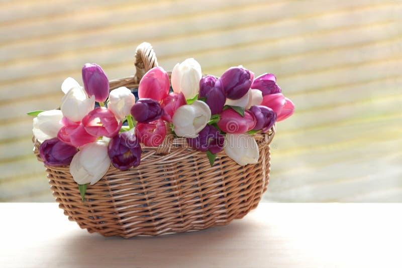 Предпосылка весеннего времени с плетеной корзиной заполнила с тюльпанами стоковая фотография