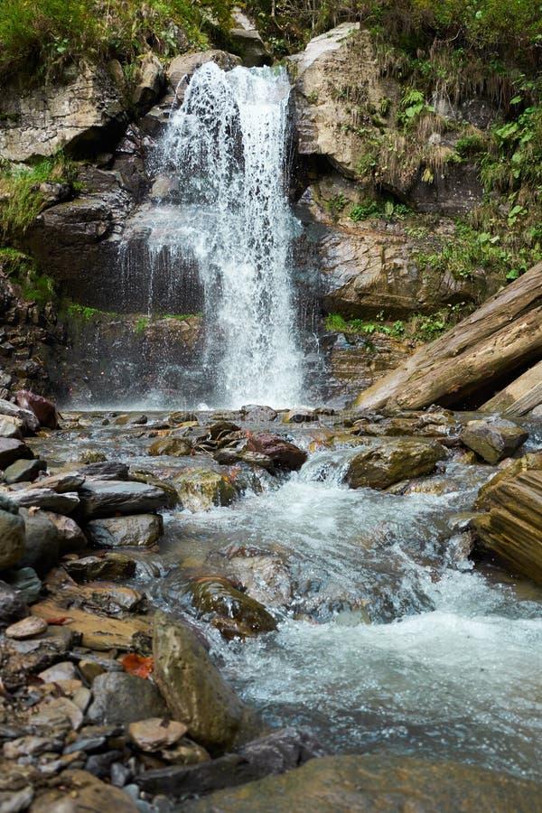 Предпосылка весны водопада красивая природа с свежими зелеными растениями и водой стоковая фотография rf
