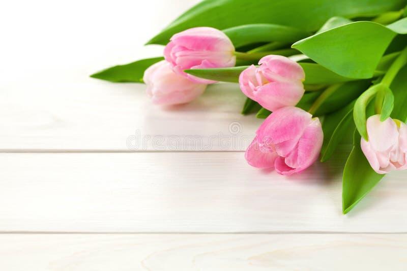 Предпосылка весны с цветками тюльпана стоковое изображение rf