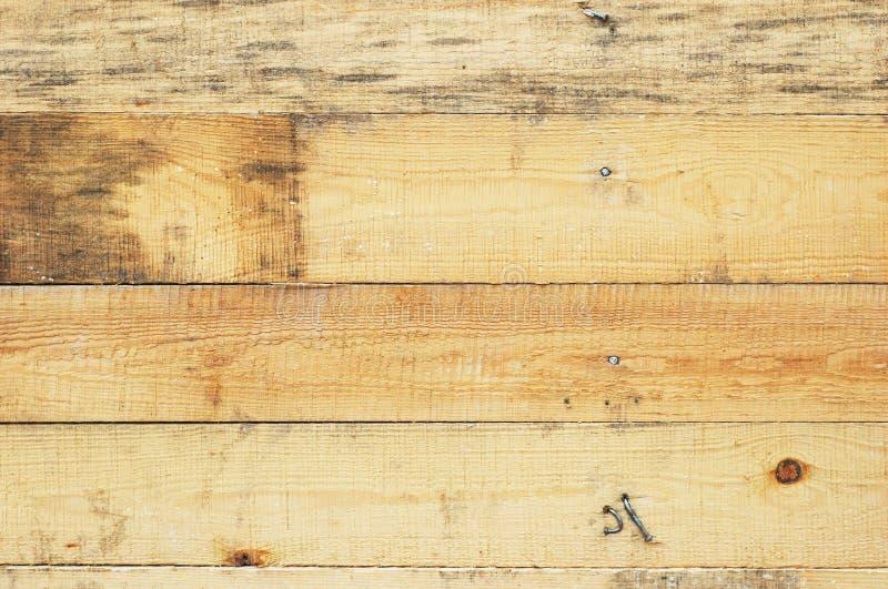 предпосылка всходит на борт древесины grunge стоковые изображения rf