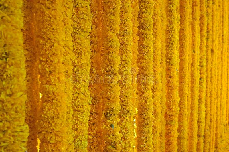 Предпосылка гирлянды ноготк желтого золота стоковые фото