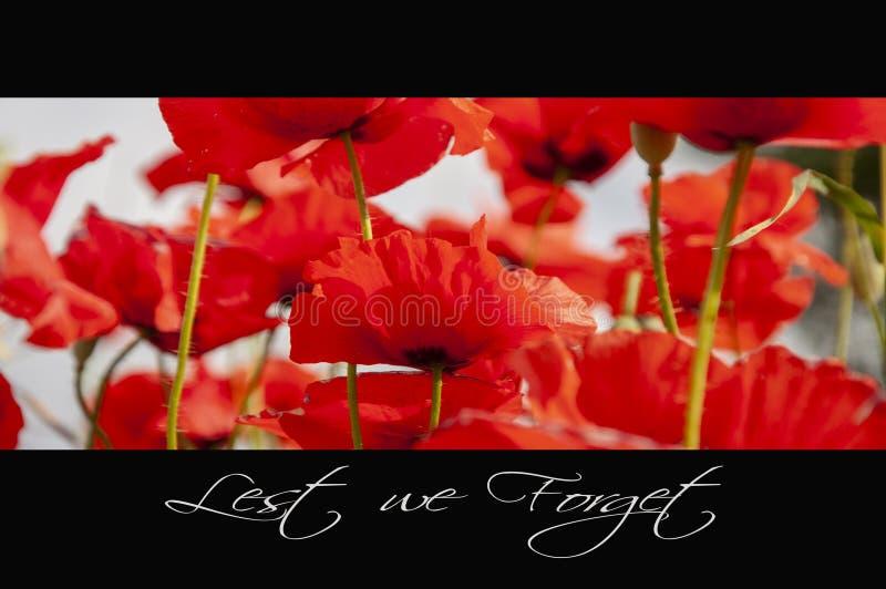 Предпосылка день памяти погибших в первую и вторую мировые войны стоковая фотография rf
