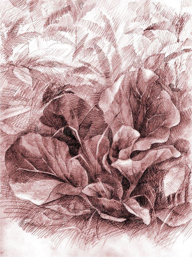 предпосылка естественная стоковое изображение rf
