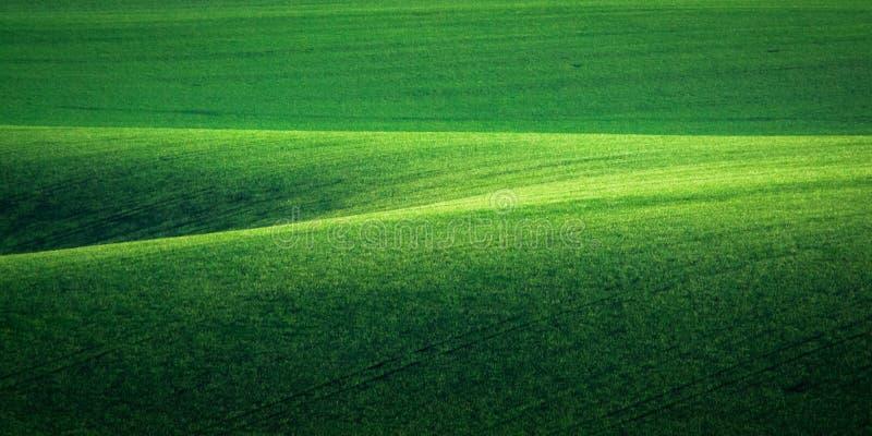 Предпосылка зеленых и tirquoise весны поля конспекта стоковая фотография rf