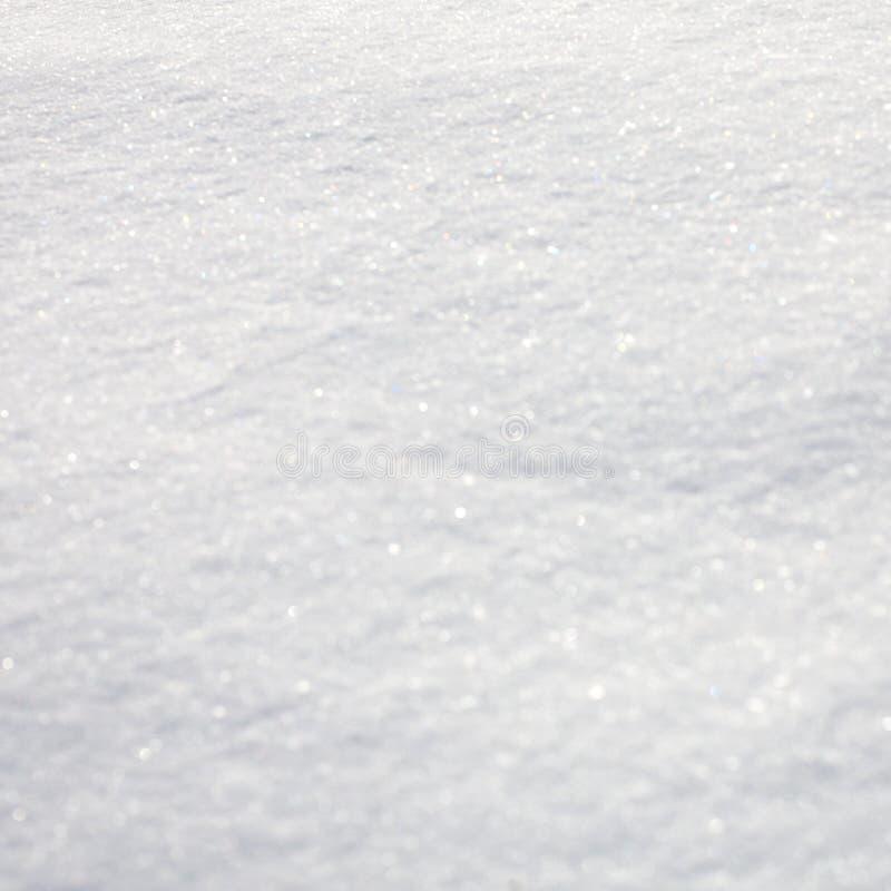 Предпосылка зимы природы нерезкости Красивая естественная картина на снеге Взгляд предусматрива снега во дне зимы солнечном Квадр стоковое фото rf