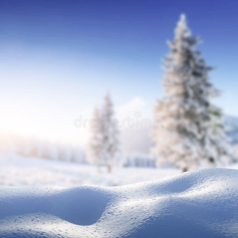Предпосылка зимы с кучей ландшафта снега Волшебный снег зимы покрыл дерево счастливое Новый Год прикарпатско Украина стоковое фото rf