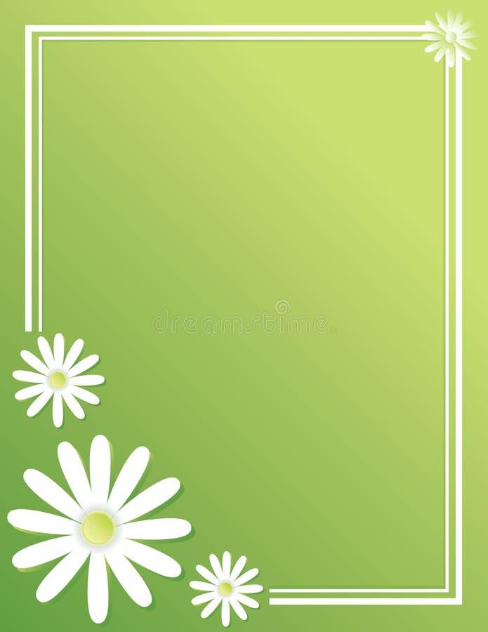 Предпосылка знамени плаката границы зеленого цвета маргаритки весны иллюстрация вектора