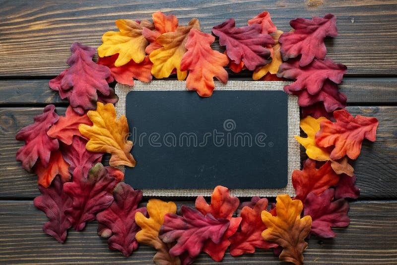 Предпосылка и рамка благодарения осени при листья и малые тыквы окружая рамку стоковые изображения