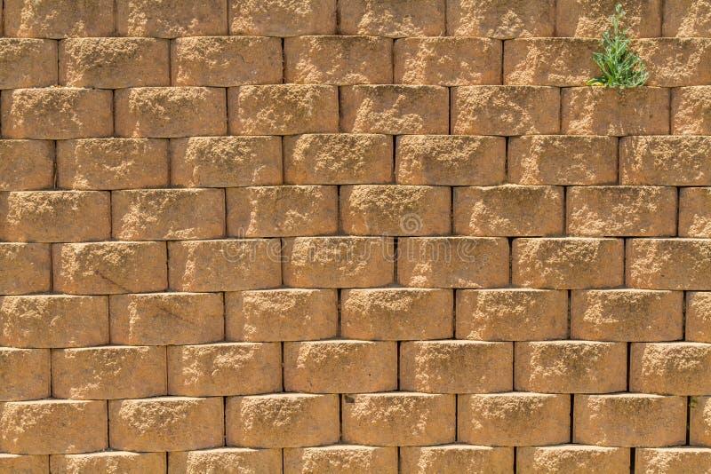 Предпосылка каменной стены, грубая поверхность стоковые изображения rf